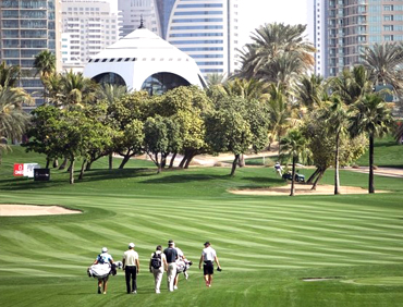 Forestry in UAE